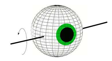 Eye Rotation in Pitch Plane
