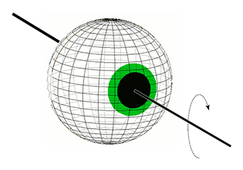 Eye Rotation in Roll Plane